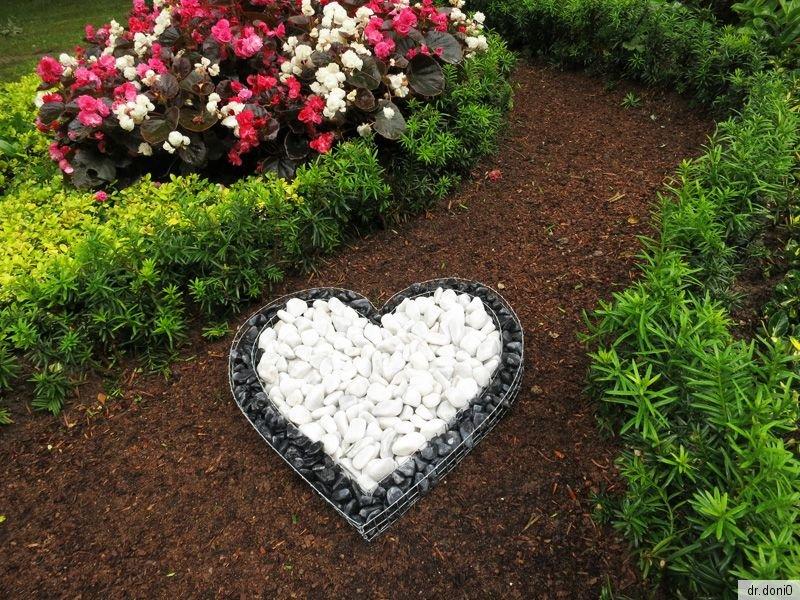 Korb herz deko garten schale grab pflanzen bertopf blumen for Pflanzen bestellen berlin